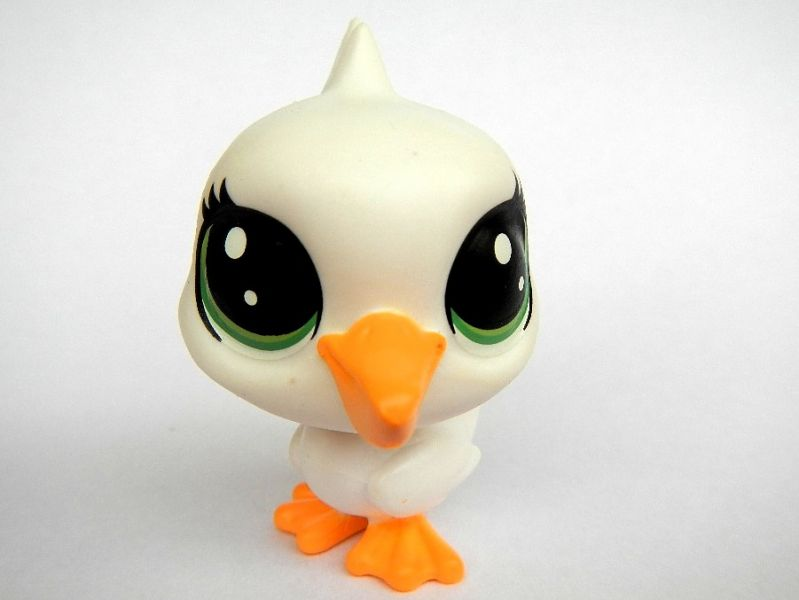littlest-pet-shop-lps-bird-pravdomil.jpg