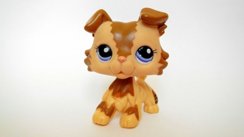 littlest-pet-shop-lps-collie-emily.jpg