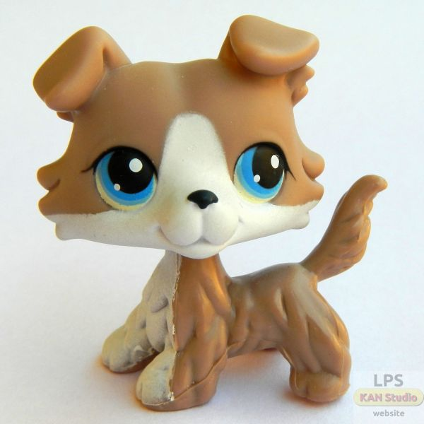 littlest-pet-shop-lps-collie-jacob.jpg