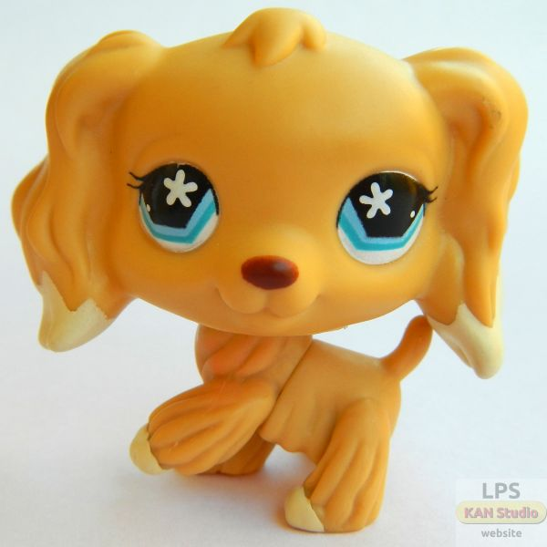 littlest-pet-shop-lps-dog-amy.jpg